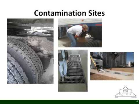 Dr. Laura Greiner - Reducing Pathogen Transmission at the Feed Mill