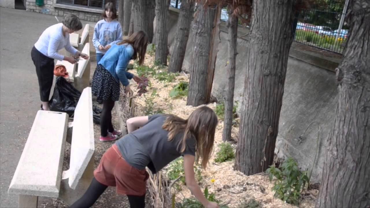 Coin nature au coll ge du jardin des plantes poitiers youtube - College du jardin des plantes ...