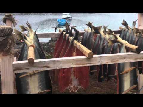 Fishing at Sisimiut. Aalisarneq Sisimiut eqqaani. Fisketure ved Sisimiut