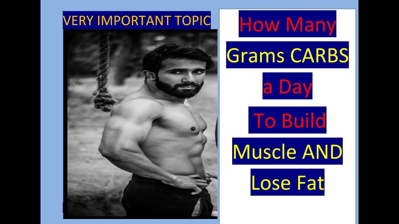 Fat loss troubleshoot review