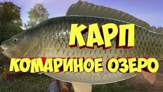 Русская рыбалка 4 КАРП Комариное озеро рр4 Алексей Майоров