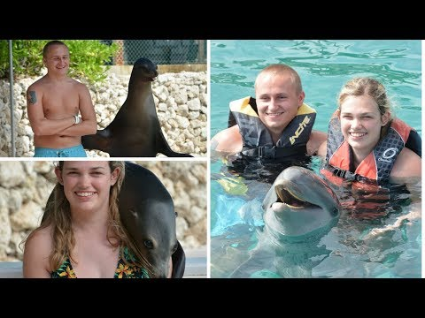 SWIMMING WITH DOLPHINS AND SEA LION ENCOUNTER