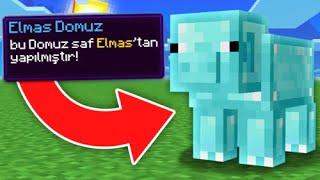 MİNECRAFTta ELMAS DOMUZ BULDUM  😱 Minecraft