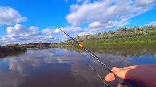 ГДЕ искать ЩУКУ в начале осени на реке Одно из лучших мест Ловля щуки на спиннинг Рыбалка на джиг