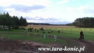 Szkółka jeździecka ''TARA'' Paweł Skrentny - Osowiec
