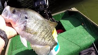 How To Make Inactive Crappie Bite