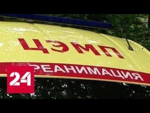 Рой ос напал на группу в московском детском саду