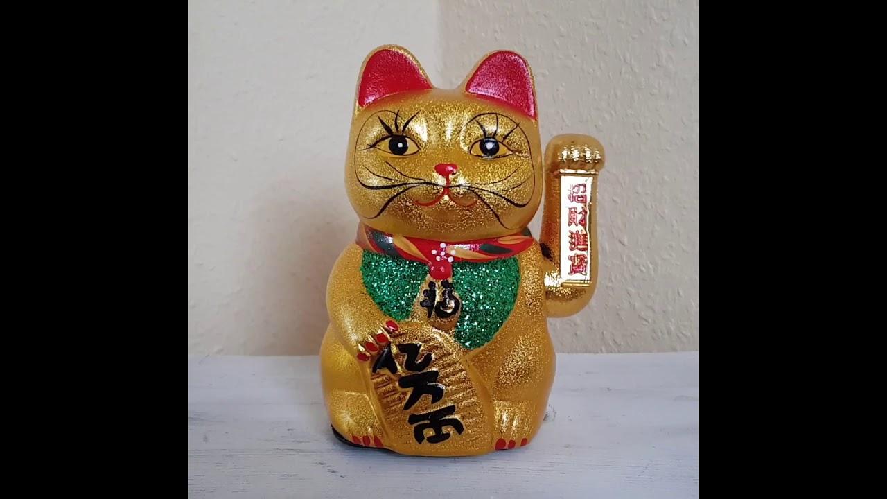 Neko Katze