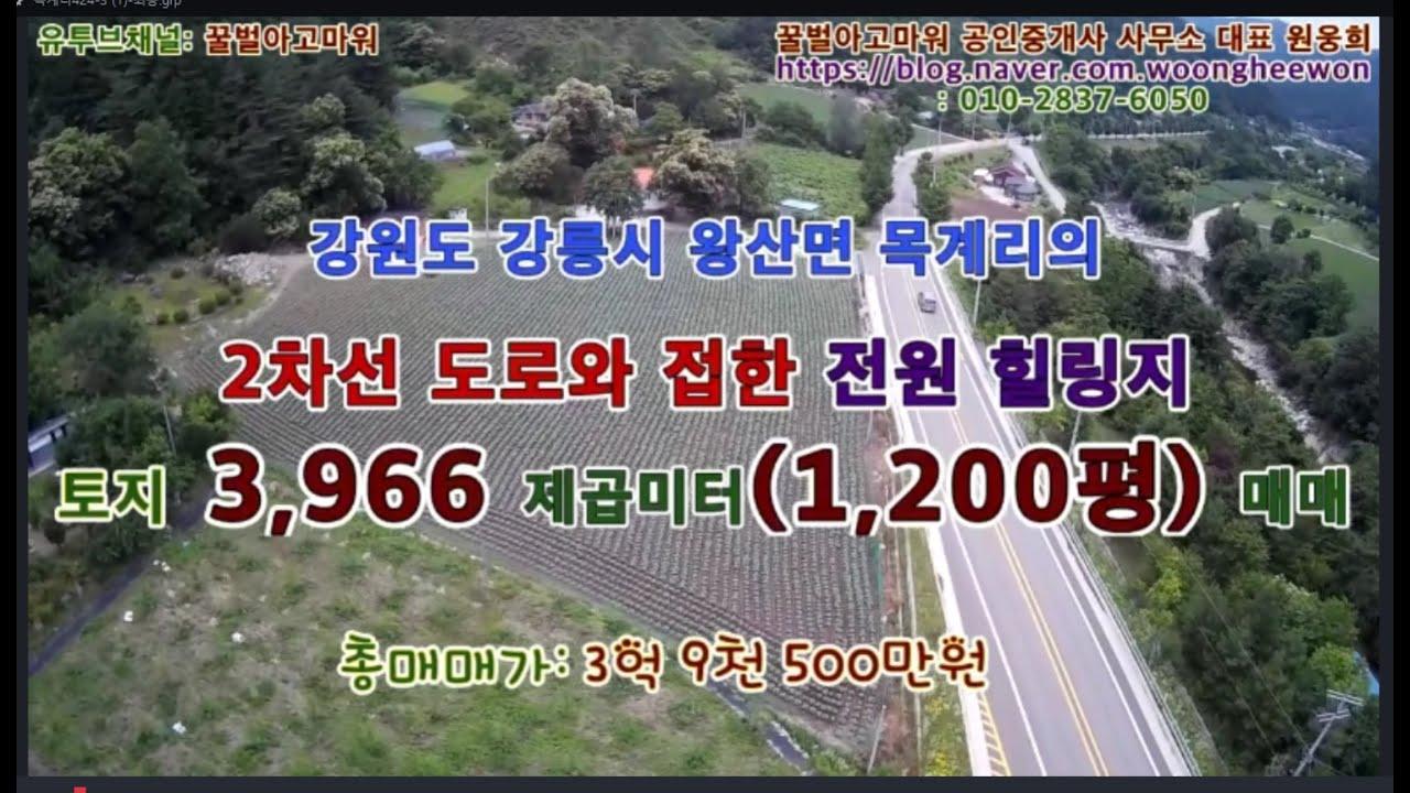 강원도 강릉시 왕산면 목계리의 2차선도로와 접한 전원힐링지 토지 1,200평 매매(Thanks for Honeybee the real estate Agency in Korea)