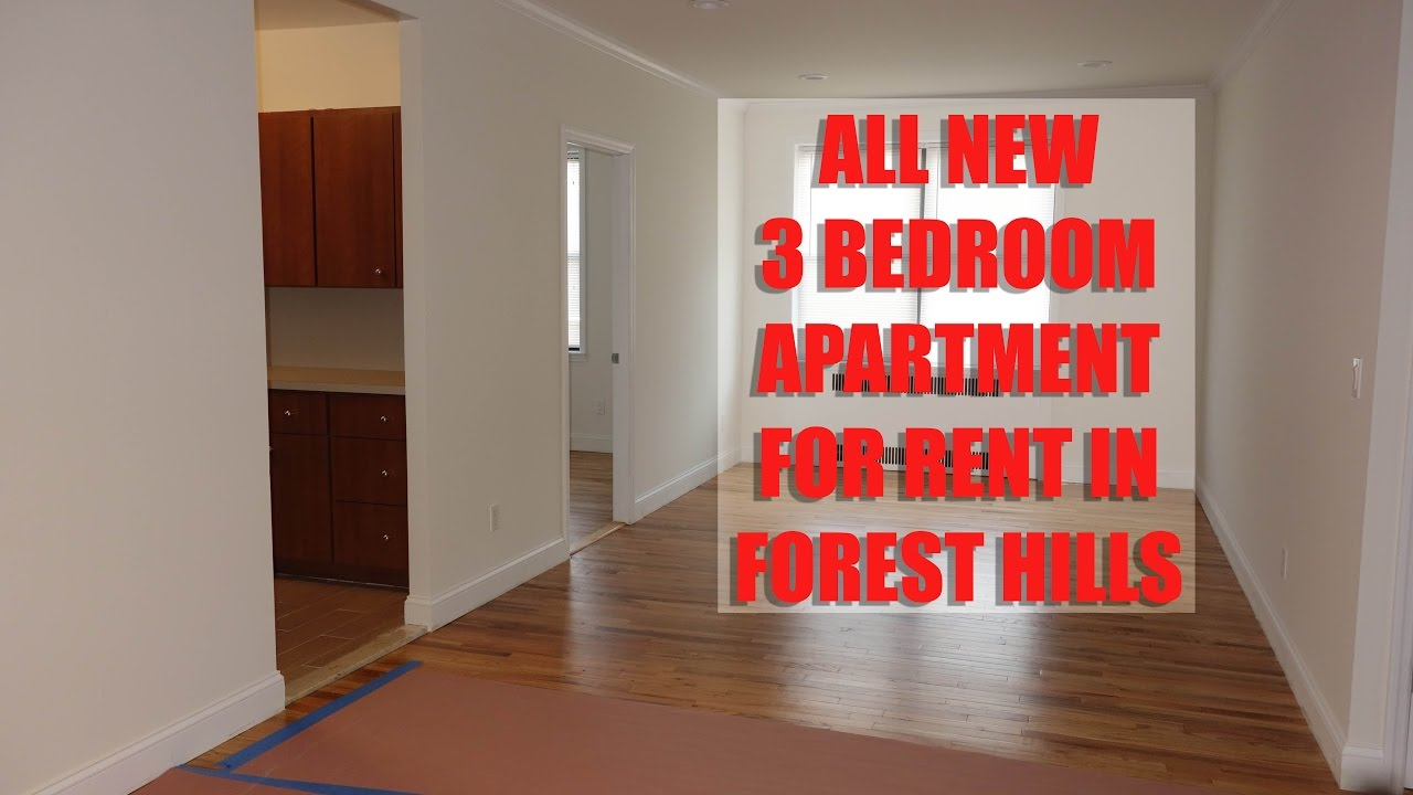 All new 3 bedroom 2 bathroom apartment for rent in - 3 bedroom apartments for sale nyc ...