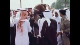 بعد 41 عامًا.. القصة الكاملة لاغتيال الملك فيصل على يد «ابن أخيه الأمير»