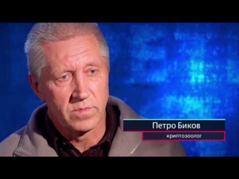 Где в Украине живет снежный человек  Секретный фронт, 17.05.2017