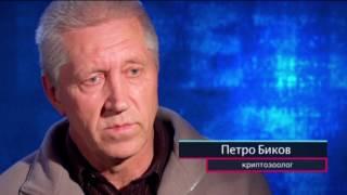 Где в Украине живет снежный человек? – Секретный фронт, 17 05 2017
