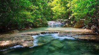 Тропическая красота Тайланда. Страна вечного лета. Документальный фильм