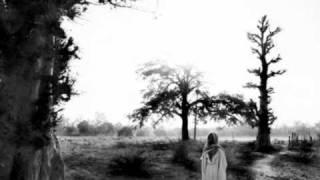 Guelewar Band of Banjul  :   Wollou  ( Photostories by Jason Florio & Helen Jones )