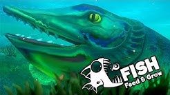 Feed and Grow Fish Gameplay German - Extremer Monster Pike Fisch