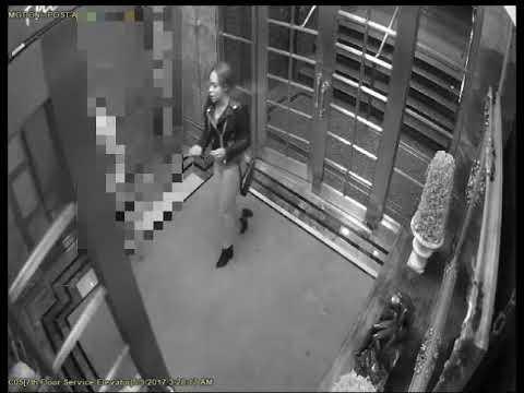 NYPD Wanted: Grand Larceny (Manhattan)