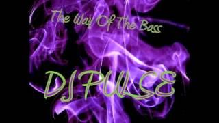 DJ Pulse - Raise Your Hands 01