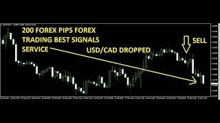 GBP/USD USD/CAD trade Best Forex Trading System 22 FEB 2019 Review -forex trading systems that work