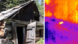 Night Bear on FLIR Thermal Cam - Abandoned Cabin - Camping With Steve