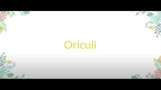 Oriculi : Cure-oreilles écologique en bambou