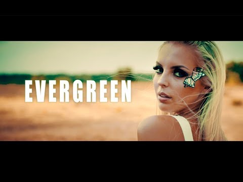 Смотреть клип Wasted Penguinz - Evergreen