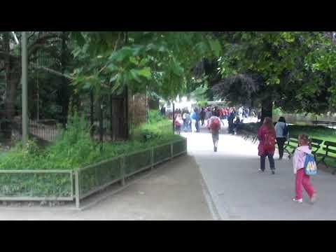 Le prince Congo visite le zoo Anvers dans des cages de prison love