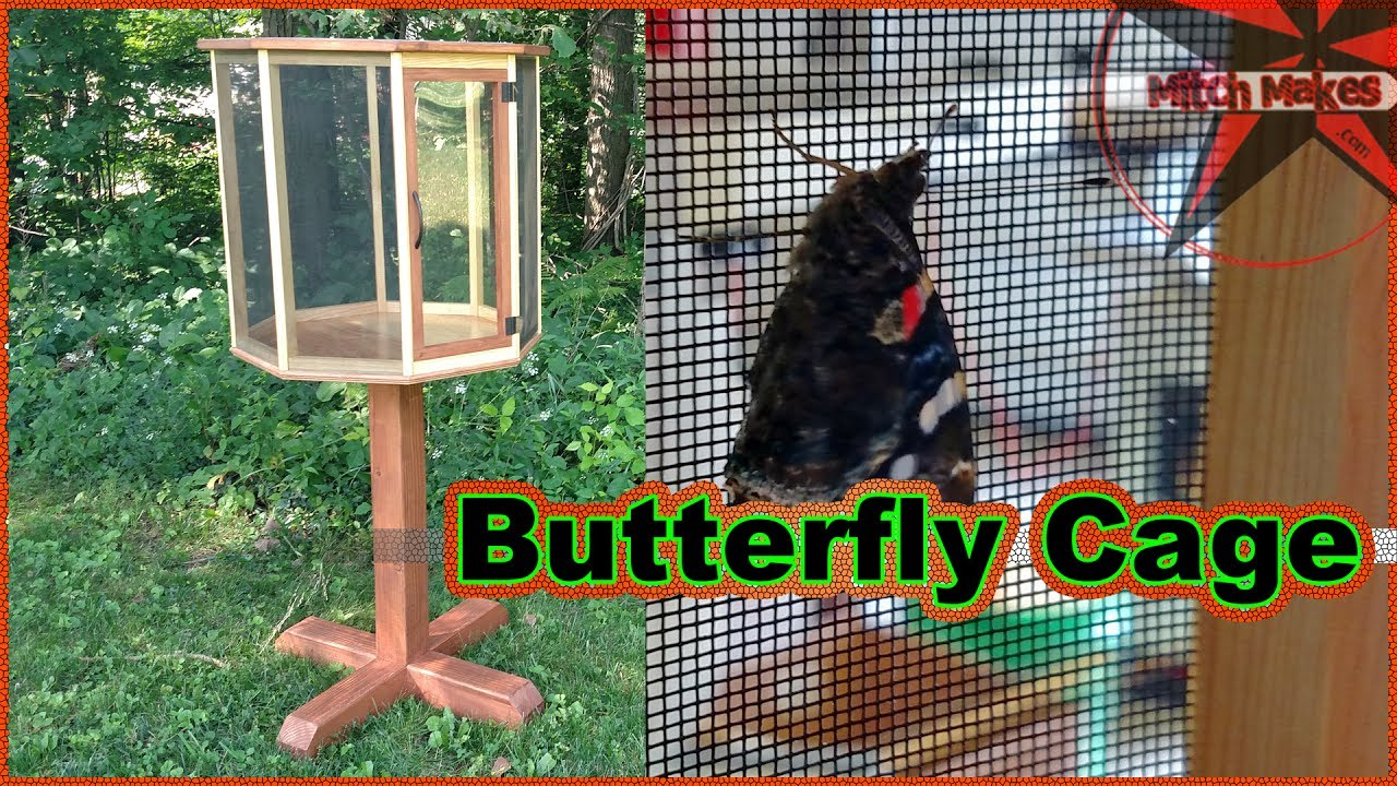 Make A Erfly Cage