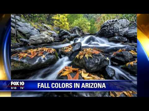 Where to go in Arizona to see beautiful fall colors