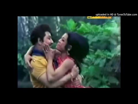 Pachai KiLi muthu charam (MGR duet) Karaoke for Male Singers (HamsaRishi)