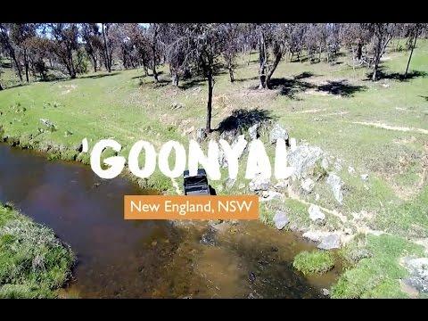 'Goonyal', New England, New South Wales