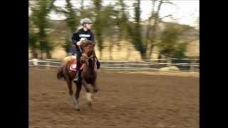 Entrainement Pony Games Peillard 25.02.12