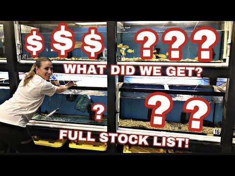 WHAT DID WE GET? NEW FISH STOCK BOWFIN, CATFISH, PIKES AND MANY MORE