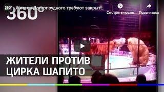 Жители Долгопрудного возмущены размещением в парке цирка Демидовых