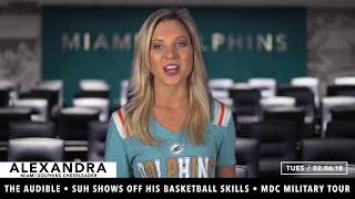 Dolphins Daily: Episode 474