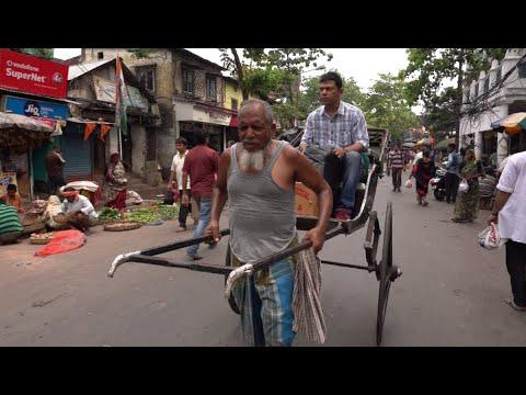 عربات النقل -ريكشا-.. تجارة قديمة  تتلاشى من شوارع الهند  - نشر قبل 1 ساعة