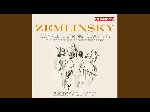 String Quartet In E Minor: I. Allegro Moderato