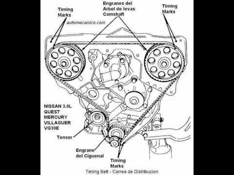 Iac For Chevy 4 3 Engine Diagram on 97 nissan pathfinder wiring diagram