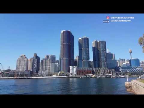 Las oficinas de Google SYDNEY - AUSTRALIA!  El MEJOR lugar para TRABAJAR
