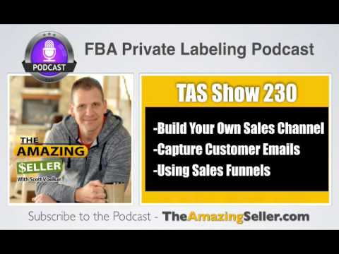 TAS 230 : 3 TYPES OF SALES FUNNELS FOR YOUR BUSINESS (SURVIVE WITHOUT AMAZON SALES)