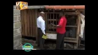 Dairy Goat keeping in Kenya