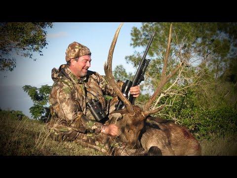 Hunting Rusa deer in New Caledonia part 37