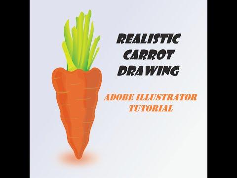 Realistic CARROT🥕 Drawing using Adobe illustrator | Beginners tutorial thumbnail