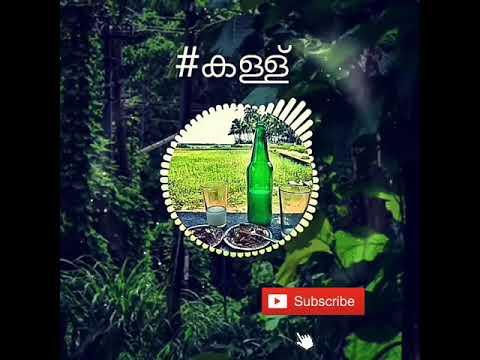 Malayalam 30 Second audio whatsapp status