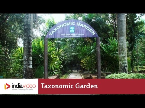 Taxonomic Garden at Nilambur