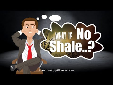 What If No Shale Revolution?