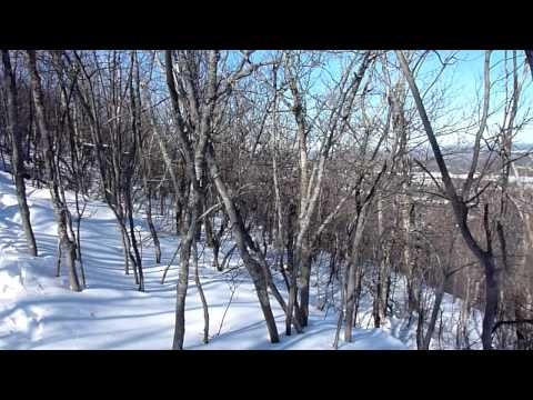 Winter Climb of Silver Peak  On The Trail  Episode 6