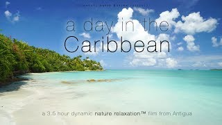 """""""A Day in the Caribbean"""" UHD 3.5 HOUR Dynamic 4K Nature Relaxation™ Film - Antigua (No Music)"""