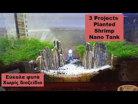 Planted Shrimp Nano Tanks No CO2  Φυτεμένα γαριδάδικα χωρίς διοξείδιο  Project Vegeta & More