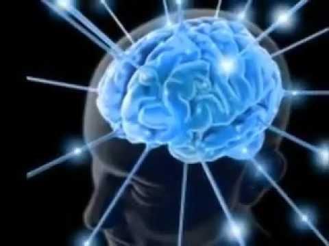 Desarrollo cognitivo, fisico y social Infancia 3-6 años